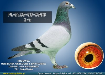 PL-0159-05-3999