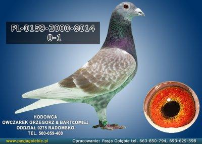 PL-0159-2000-6014