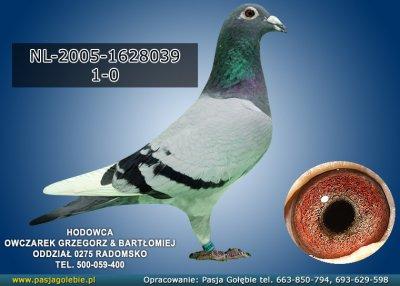 NL-2005-1628039