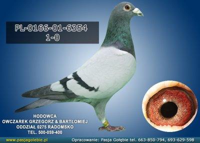 PL-0166-01-6354