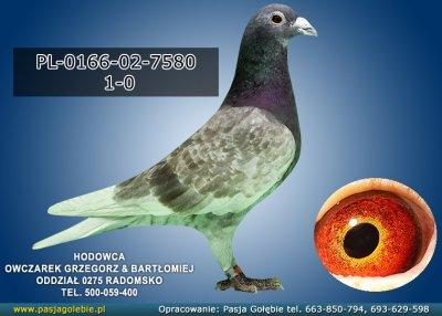 PL-0166-02-7580