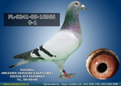 PL-0241-05-16966