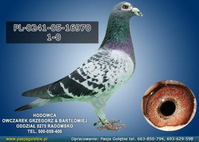 PL-0241-05-16970