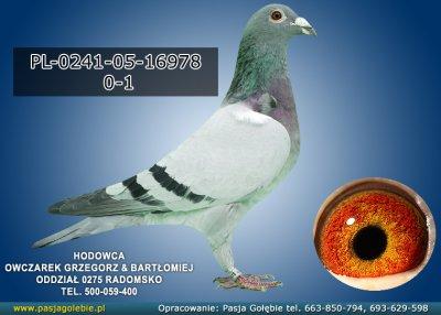 PL-0241-05-16978