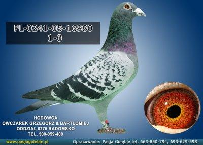 PL-0241-05-16980