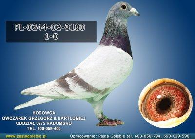 PL-0244-02-3180
