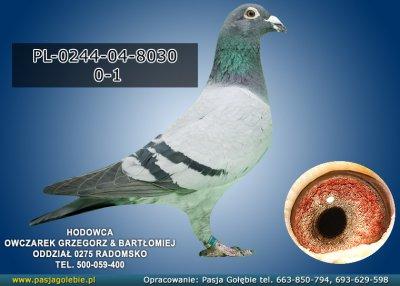 PL-0244-04-8030