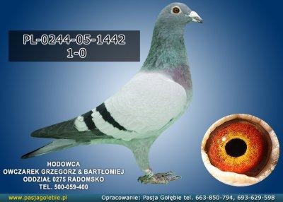 PL-0244-05-1442