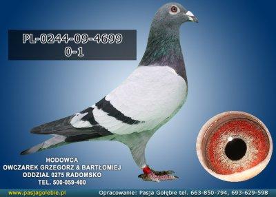 PL-0244-09-4699