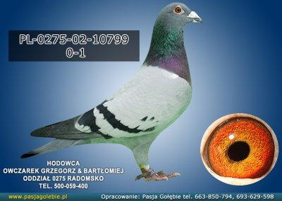 PL-0275-02-10799