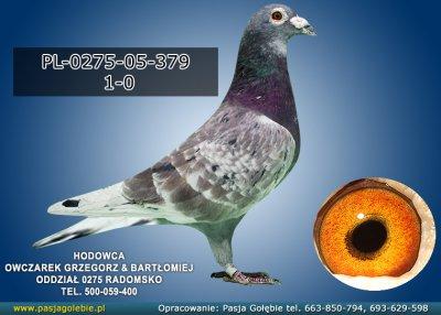 PL-0275-05-379