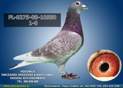 PL-0275-08-10550