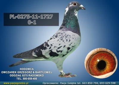 PL-0275-11-1727