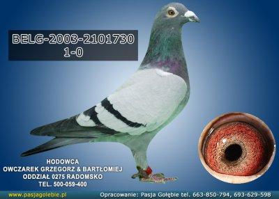 BELG-2003-2101730