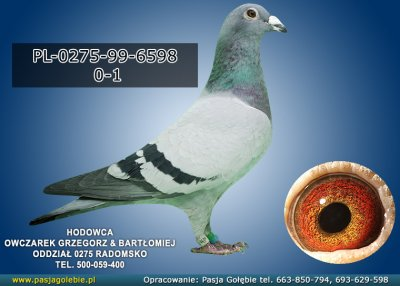 PL-0275-99-6598