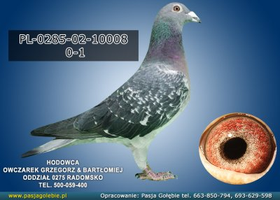 PL-0285-02-10008