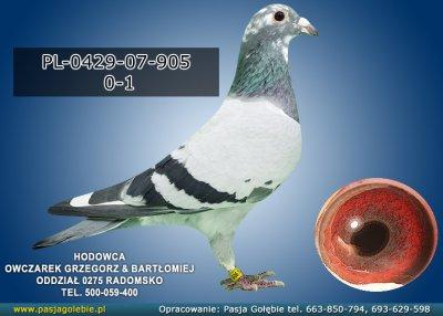 PL-0429-07-905