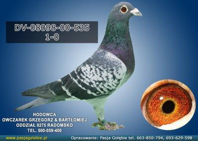 DV-08098-00-535