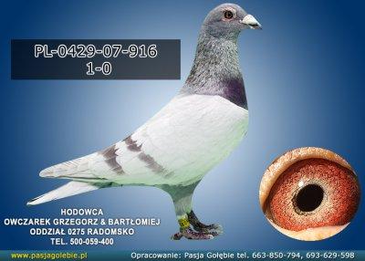 PL-0429-07-916