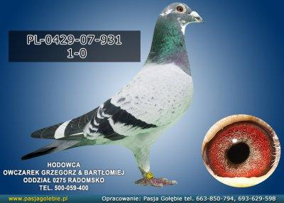 PL-0429-07-931