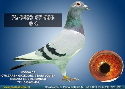PL-0429-07-936