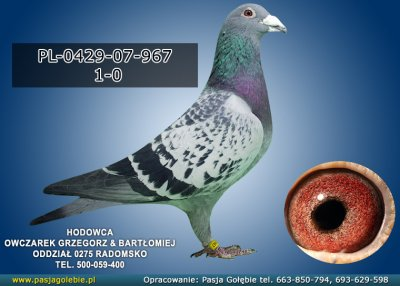 PL-0429-07-967