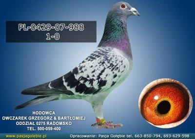 PL-0429-07-988