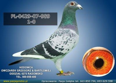 PL-0429-07-989