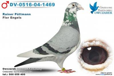 dv-0516-04-1469-golab