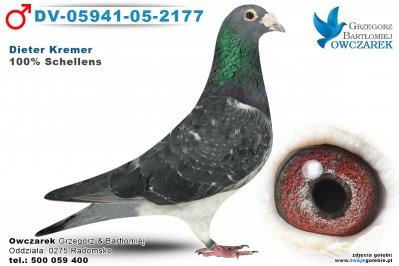 DV-05941-05-2177-golab