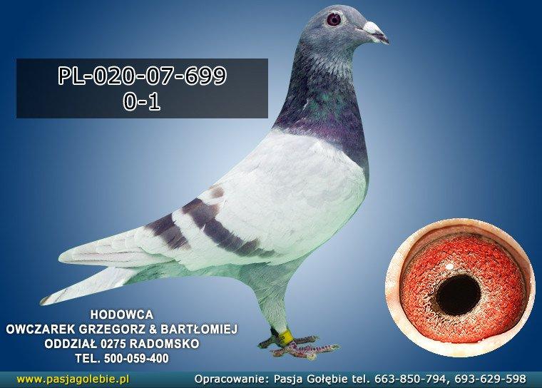 PL-020-07-699