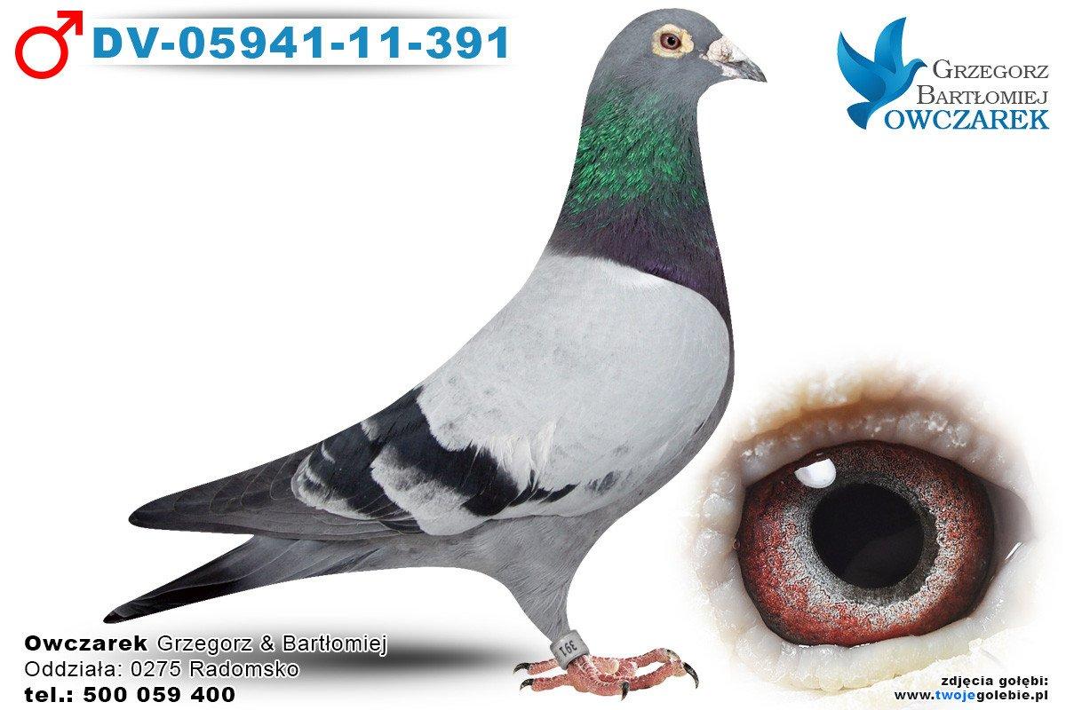 DV-05941-11-391