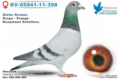 dv-05941-11-398-golab
