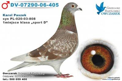 DV-07290-06-405-golab