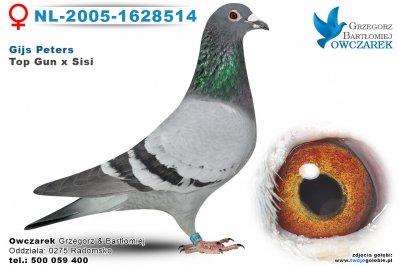 NL-2005-1628514-golab