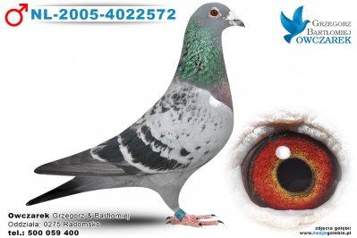 NL-2005-4022572