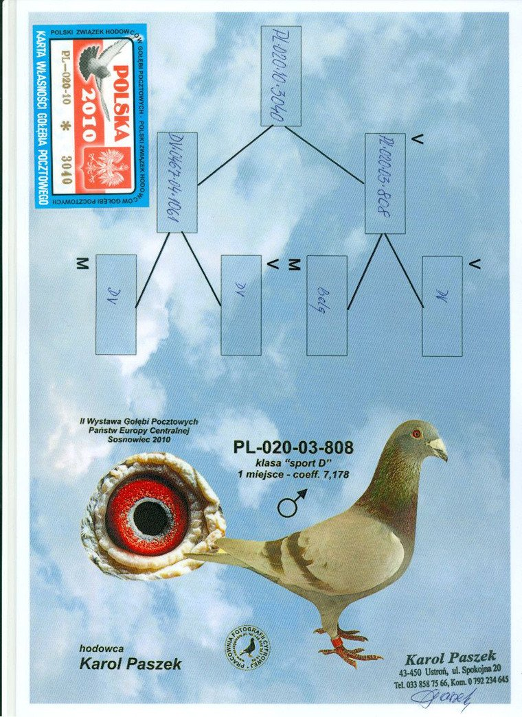 PL-020-10-3040_