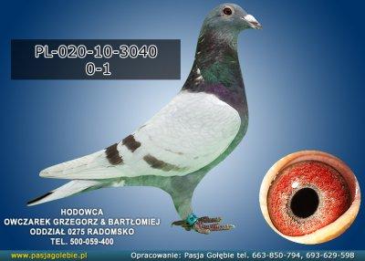 PL-020-10-3040