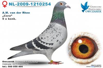 nl-2009-1210254-golab