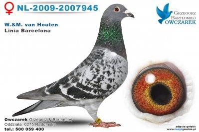nl-2009-2007945-golab