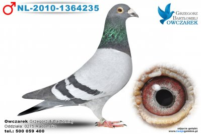 NL-2010-1364235