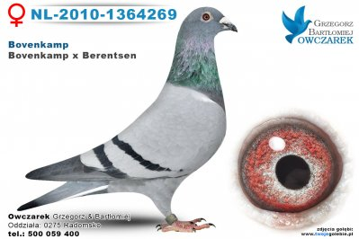 NL-2010-1364269-golab