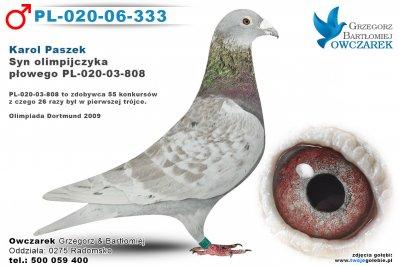 PL-020-06-333-golab