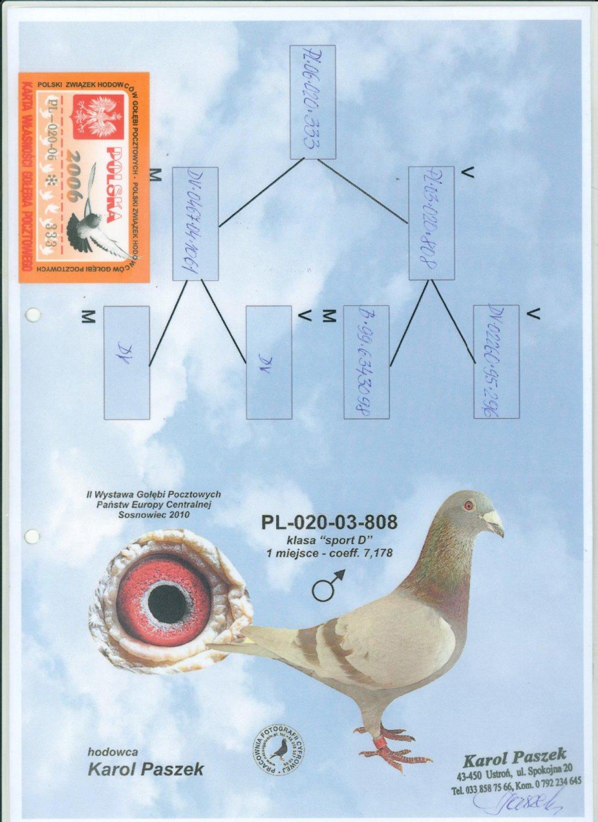 PL-020-06-333