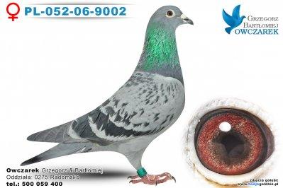 PL-052-06-9002