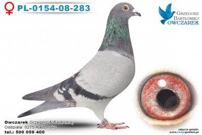 PL-0154-08-283