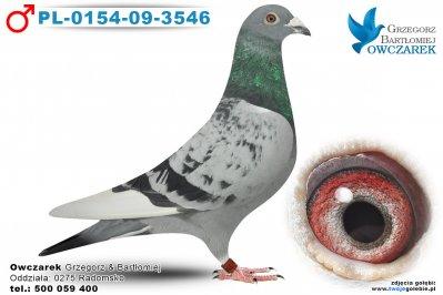 PL-0154-09-3546