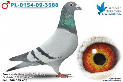 PL-0154-09-3588