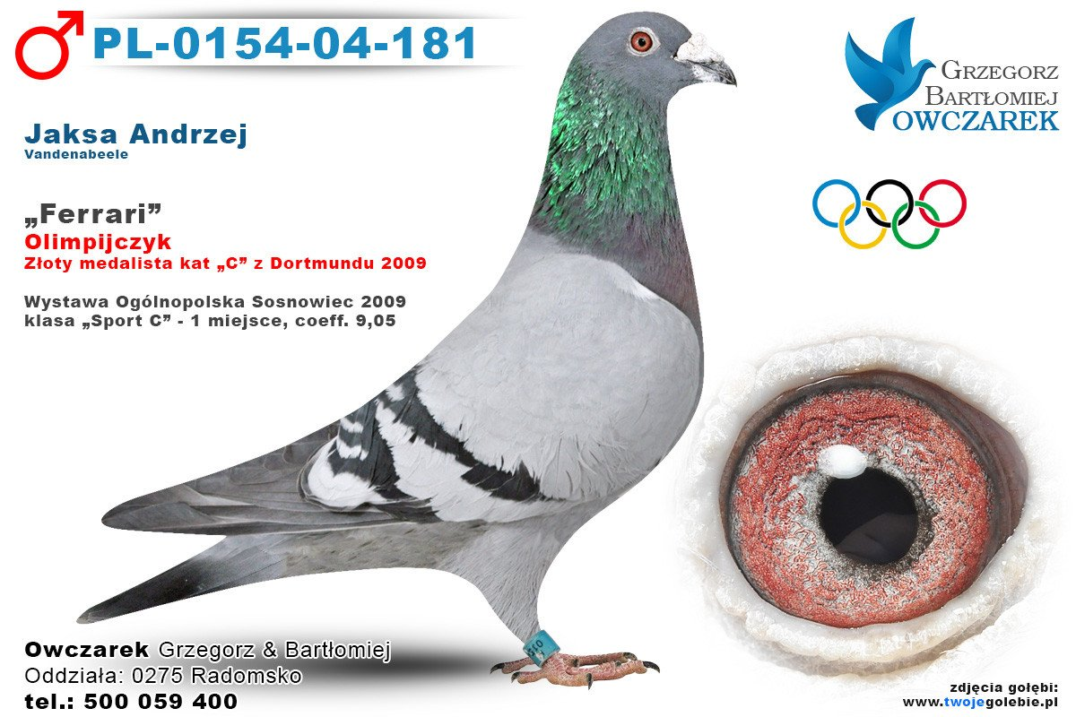 PL-0154-04-181-golab