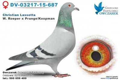 DV-03217-15-687
